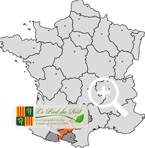 carte haute garonne france